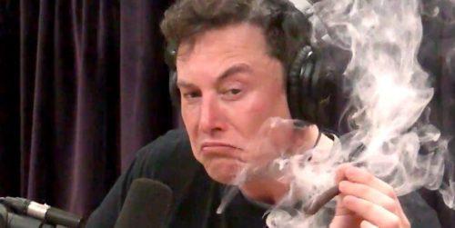 Elon smokes a doobie with Joe