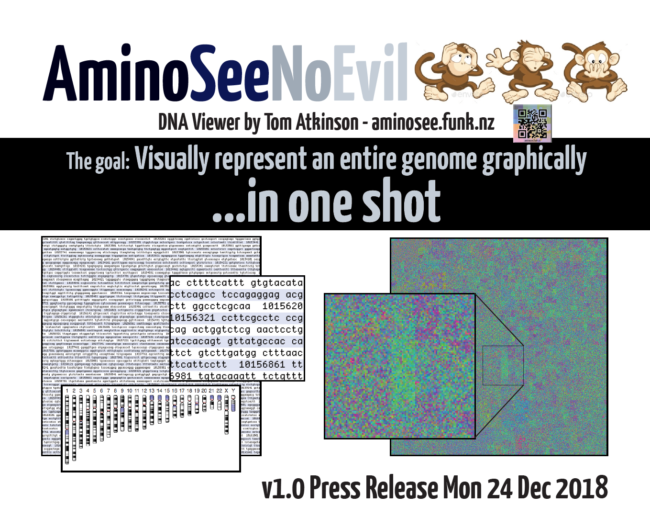 Introducing AminoSee DNA Visualisation